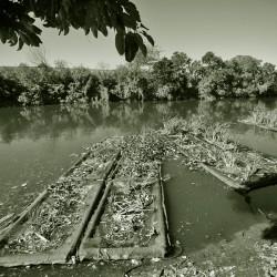 Plantas y humedales artificiales devuelven oxígeno y vida al arroyo Cildáñez