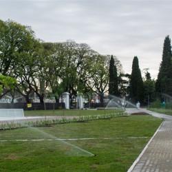 Lenta recuperación de la superficie verde que la ciudad perdió en los últimos años