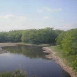 Un nuevo mapa del agua permitirá racionalizar su uso en el territorio bonaerense