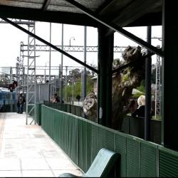 Nuevo tren eléctrico vuelve a conectar a Berazategui y Bosques