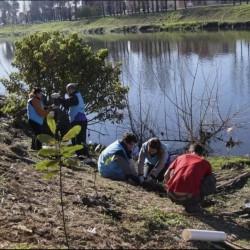 Más árboles contra la contaminación: plantaron mil ejemplares a la vera del Riachuelo