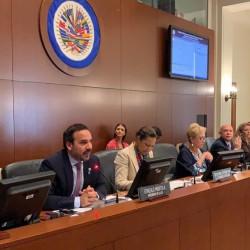 Mórtola expuso trabajos del Puerto Buenos Aires ante OEA