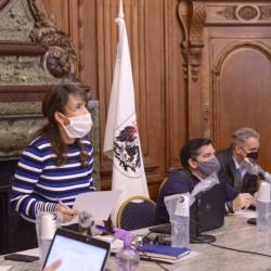 La urbanización de terrenos en Salguero y Villa Crespo se trató en comisiones - Legislatura
