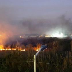 Fuego en las reservas: incendios intencionales en nuestras reservas del Conurbano