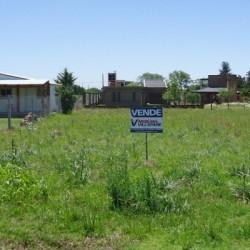 """El Procrear y el precio de la tierra: """"Provincia y municipios deberán trabajar para evitar la especulación"""""""