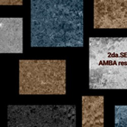 2da Serie Especial COVID-19. AMBA resiste. Actores territoriales y políticas públicas.