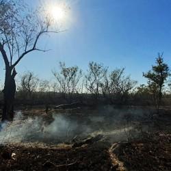 """Incendios en el Delta: preparan un """"twitazo"""" por la ley de humedales que se debate en Diputados"""