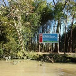 En Tigre harán un centro de investigación de humedales financiado por constructoras e inmobiliarias