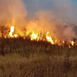 Medio ambiente: advierten sobre incendios en reservas naturales del conurbano