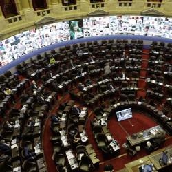 Humedales: el oficialismo buscará hoy avanzar con un dictamen a un proyecto