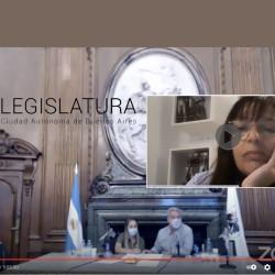 La posición del CPAU en la audiencia pública sobre Costa Salguero