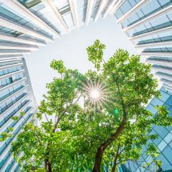 """Construcción """"COVID free"""": el impacto del coronavirus en la arquitectura y el urbanismo analizado por expertos"""